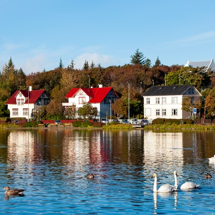 Tjornin: a lovely lake of Reykjavik