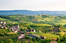 Goriška Brda – the Slovenian capital of wine and cherries