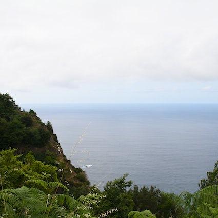 A Trip to Madeira - Santana