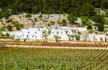 Drinking wine in Apulia