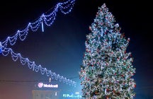 Chisinau's majestic Christmas tree