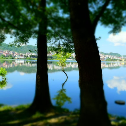 An escape into nature-Tirana's artificial lake