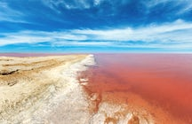 Lemurian Lake, a unique pink oasis in Ukraine