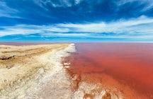 Lemurianischer See, eine einzigartige rosa Oase in der Ukraine