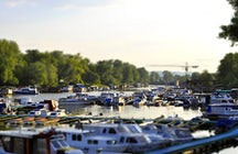 Where to find the best fish restaurants in Novi Sad