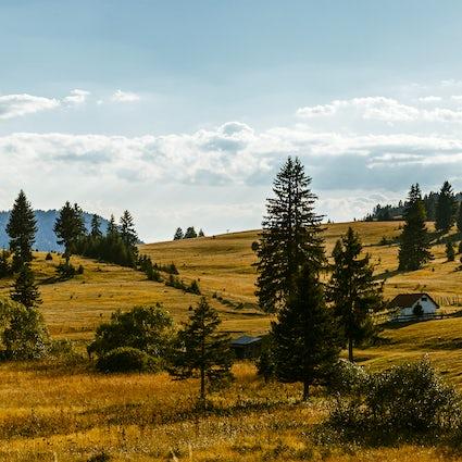 Vacaciones en el monte Zlatibor, naturaleza con el confort de una ciudad