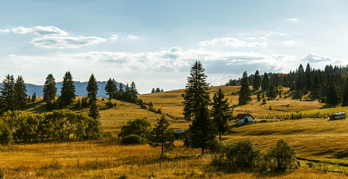 Cover photo© Credits to iStock/Marija Stepanovic
