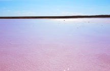Il Lago Rosa Kobeituz: l'ultima scoperta del Kazakistan