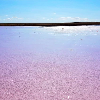 The newest discovery of Kazakhstan: Pink Lake Kobeituz
