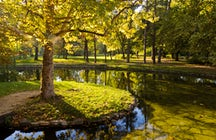 Ecología en Belgrado: Parque Topcider