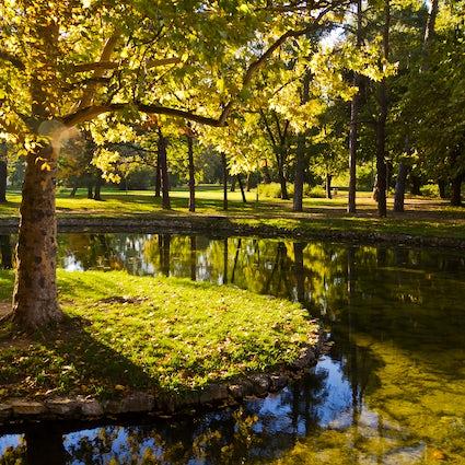 Belgrad Greenery: Park Topcider
