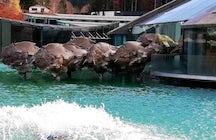 Bulls of Fuschl: The biggest European sculpture