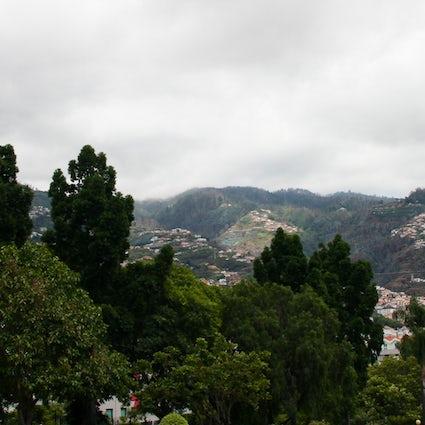 Visita Funchal (Madeira): vida y cultura al oeste de la ciudad