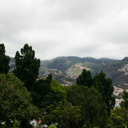 A Trip to Madeira - Funchal Part 2