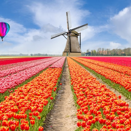 Daytrips around Amsterdam; canals, tulips, bikes and windmills!