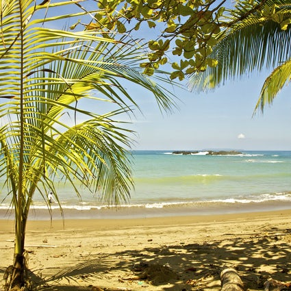 Vacationing off-the-grid on Osa beaches