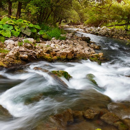 Exploring Gradac River, a scenic adventure by the unpolluted river