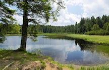 Superbe randonnée au bord du Lac Noir