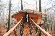 Spend a night in a treehouse near Trenčín