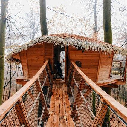 Overnachten in een boomhut in de buurt van Trenčín