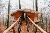 Spend a night in a treehouse near Trenčín