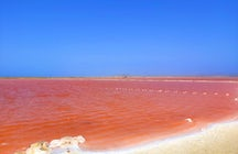 Salinas de Galerazamba: Colombia's pink sea