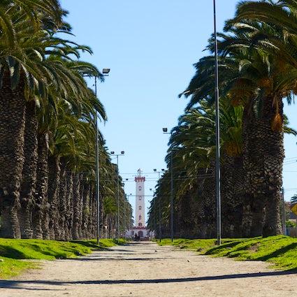 L'impact du COVID-19 sur la ville de La Serena, Chili