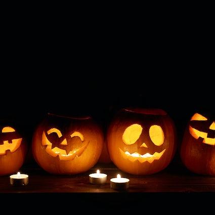 Bratislava Halloween Überlebensführer für Halloween