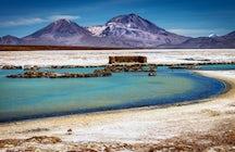 Lo mejor de la naturaleza en la región de Arica y Parinacota