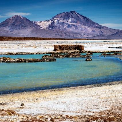 Le meilleur de la nature dans la région d'Arica et de Parinacota