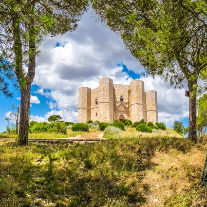 Castel del Monte; the castle depicted on the Italian coin.
