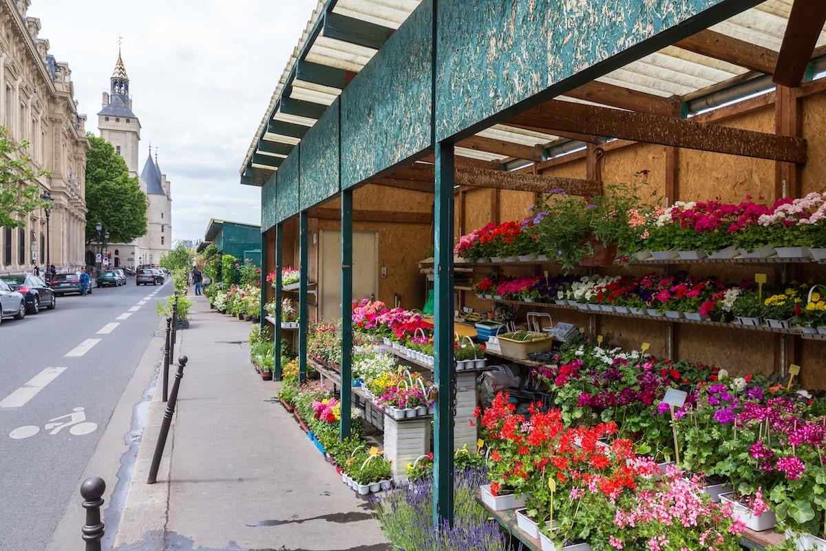 The best Paris markets: Flower Market
