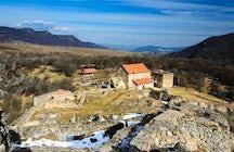 Dmanisi: de donde vienen los primeros europeos