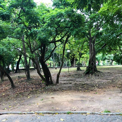 Sítio da Trindade in Pernambuco- the last resistance against Dutch invasion