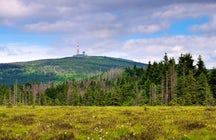 Senderismo en las montañas de Harz