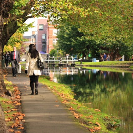 Ein Spaziergang entlang des Grand Canal von South Dublin