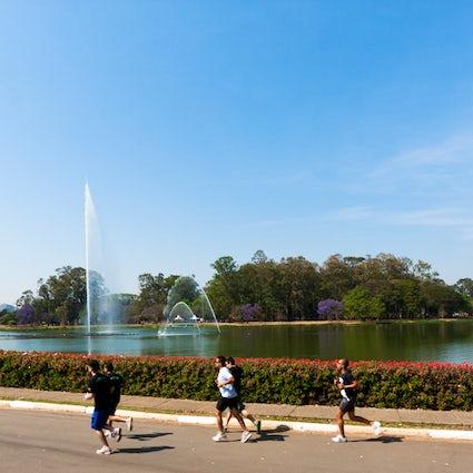Áreas verdes para el deporte y la relajación en São Paulo
