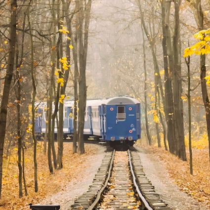 Autumn in Piedmont: the Fall Foliage Train