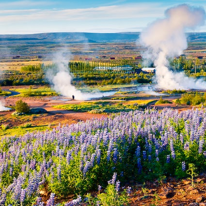 Iceland's Great Geysir and other geysers