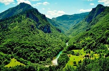 La última selva de Europa - el bosque fluvial de Perućica