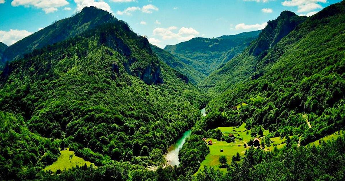 Europe's last jungle revealed - Perućica Rainforest