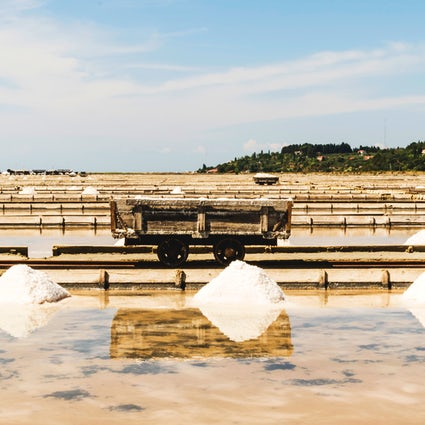 Sečovlje Saltworks: Where a manual salt collection still lives