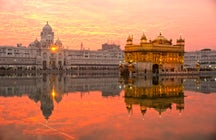 The Golden Temple of Amritsar: where faith and food intertwine