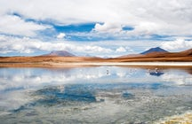 Reserva Nacional Eduardo Abaroa - El tesoro del Altiplano