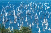 Velas blancas en la Royal Regatta de Dartmouth