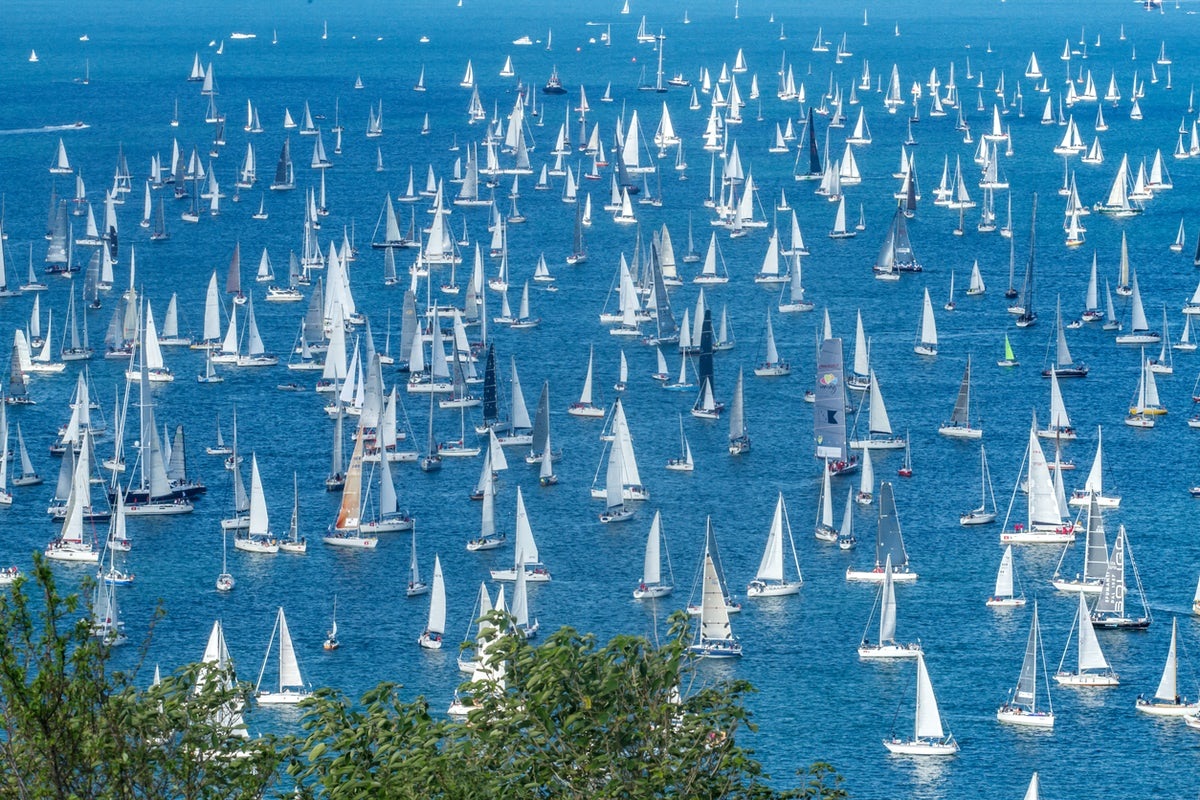 White sails at the Royal Regatta in Dartmouth