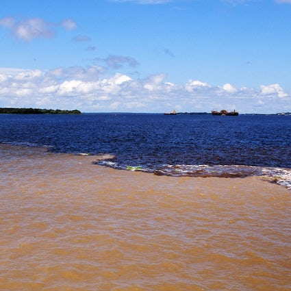 Meeting of waters - the natural beauty of Manaus