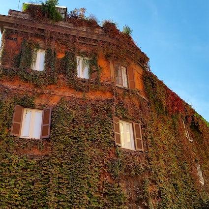 Exploring Trastevere in Rome