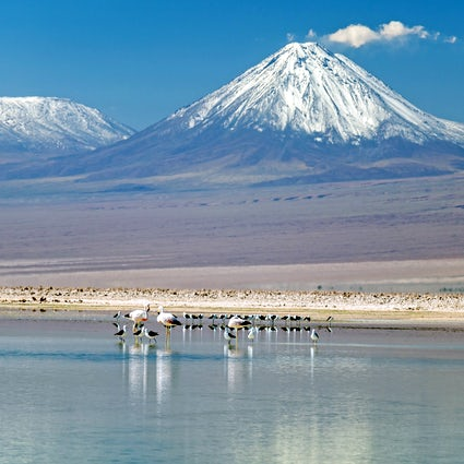 Lagoons in the desert; Atacama's hidden gems