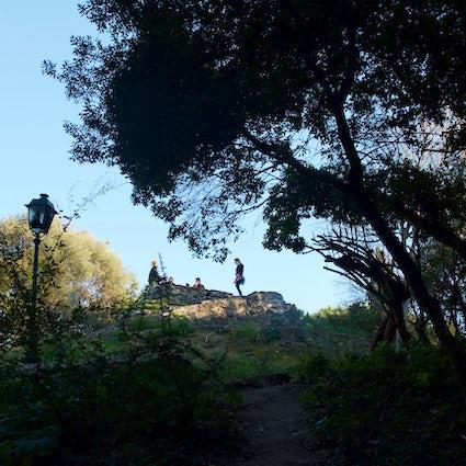 Gardens of Lisbon - Estrela